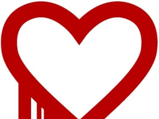 heartbleed bug